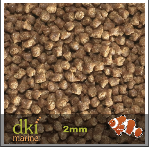 DKI2mm-1