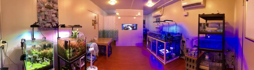 showroom-01
